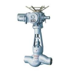 Vacuum exhaust steam globe valve apply for power