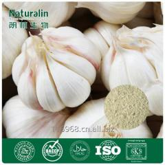 Natural Garlic Extract