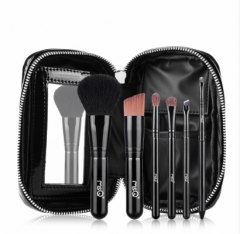 6 Piece Travel Makeup Brush with Case
