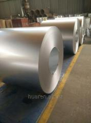 Prime Hot Dip Galvanized Steel in coils and sheets