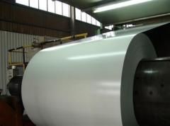 Zinc coated steel sheet with polyester
