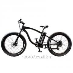 Electric mountain bicycle.