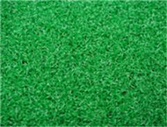 Leisure Grass WF-M4