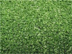 Leisure Grass WF-KW1