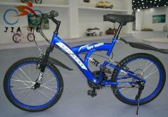 Kid pedal bike