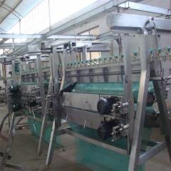 Chicken and poultry slaughtering line