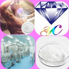 High Quality Steroid Hormone Powder Testosterone