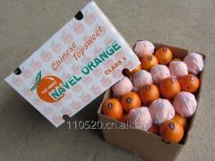 Chinese orange