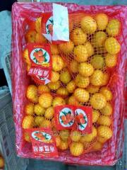 Mandarin orange (Lugan)