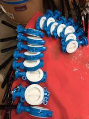 我已经设置了球阀和蝶阀盘与PTFE来自中国的衬