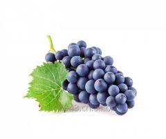 Высокой чистоты виноградный экстракт кожи