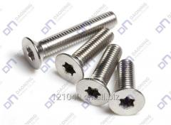Torx Countersunk head screw