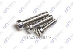 Slotted pan head screws