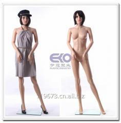 Eko pp 环保塑料模特