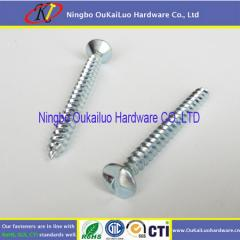 Zinc Plated Tamper Proof One Way Screws