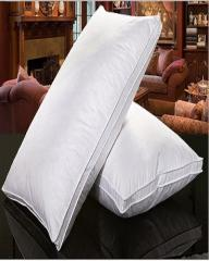 Comfort Healthy Standard Classic White Duck Down Feather Pillow