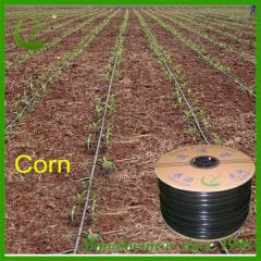 Cheap drip Lateral Tape roll for drop watering