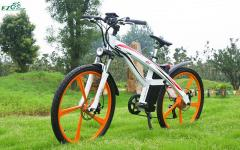 Electric Bike TDE01