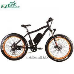 Electric Bike TDE07