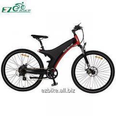 Electric Bike TDA11 250W