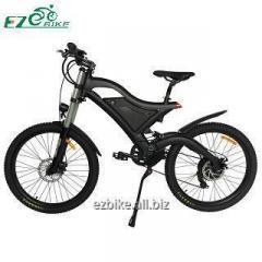 Electric Bike  TDE15
