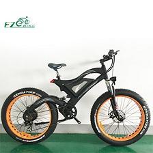 Electric Bike TDE18