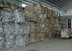 Scrap Papers