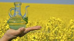 Ukrainian refined rapeseed oil. Minimum 2000 mt