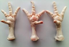 CHICKEN FEET A-grade