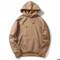 Men's sweatshirt cotton