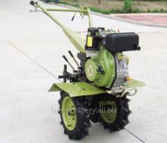 モチ栽培者。 モデル: 1WG-4 (with R175 diesel engine)