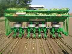 Seedling Transplanter