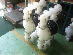 RW pneumatic diaphragm pump