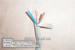 6242Y Cable