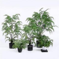 Artificial Indoor Ferns with Multi Stems