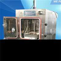 Series Vacuum Freeze Dryer LGJ-12S