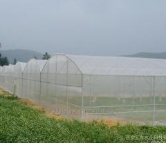 Fiberglass insect screen/insect net/window screen