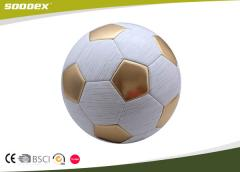 Novel Machine-Sewing Size 5 Practice Football OEM