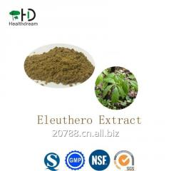 Siberian Ginseng Extract/Eleuthero Extract /Eleutherococcus Senticosus Root Extract20:1