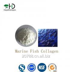 Marine Fish Collagen Powder,Raw Material Collagen