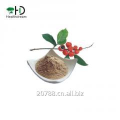 Guarana powder, Guarana extract powder
