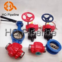 Wafer/Lug/Swing/Grooved End Type Butterfly Valve/Check Valve
