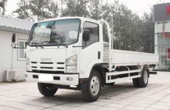 Isuzu ELF cargo lorry truck transport truck