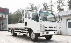 Isuzu 700P ELF lorry truck white