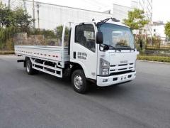 Isuzu ELF lorry truck