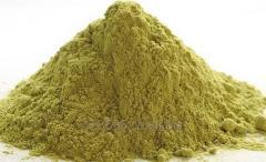 Fennel powder 100% raw material