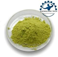 Mulberry leaf powder 99% ratio 80 mesh