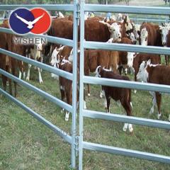 Avustralya Standart ucuz sığır panelleri Satılık