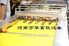 Egg Packaging Machine From China Including Egg