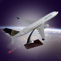 Заказной самолет модели OEM Boeing 737 United